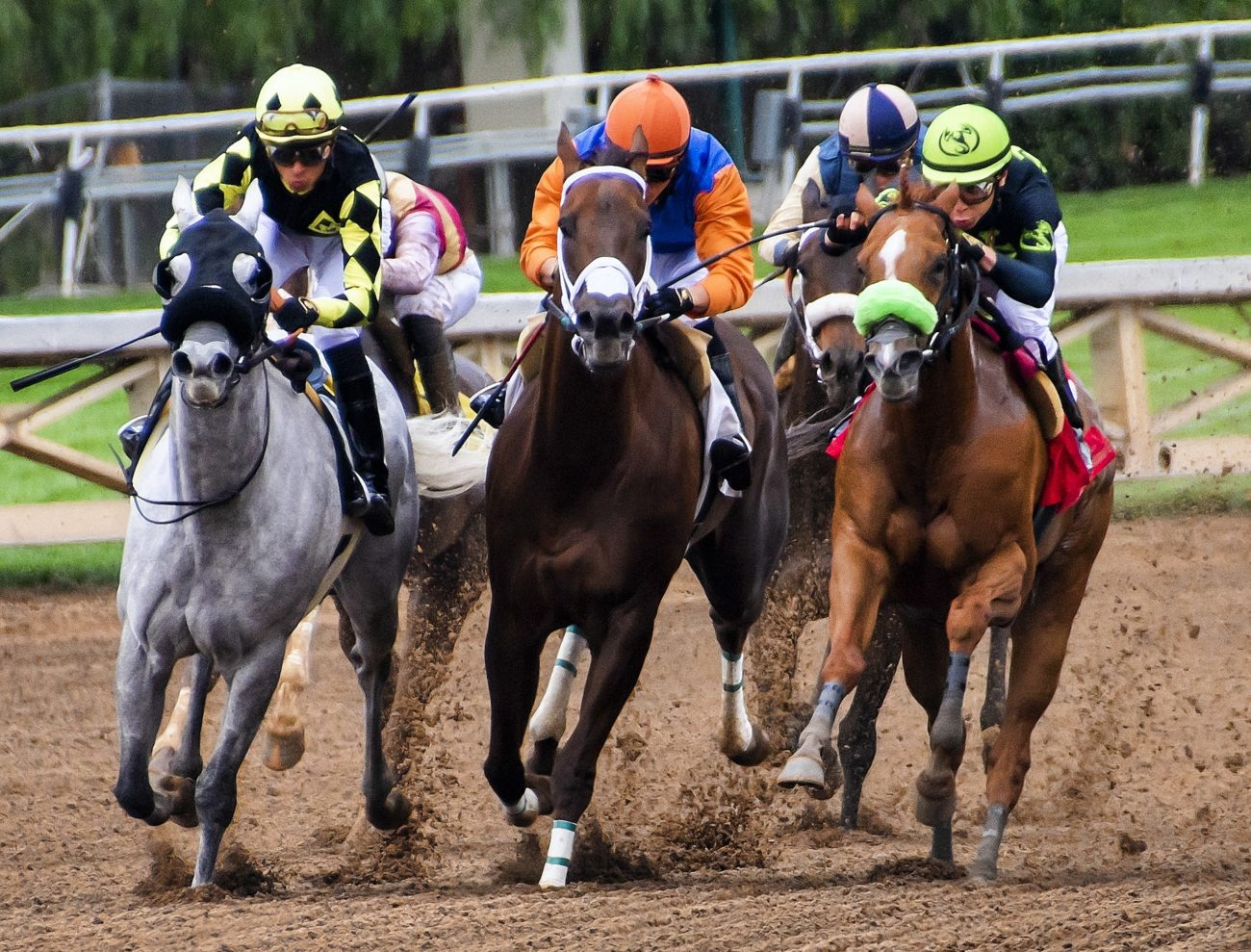 Horse race betting in france binary options news trading strategy