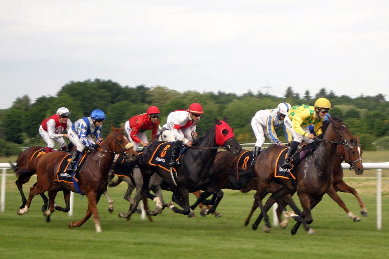 Irish racing betting directory vulcan gold betting free