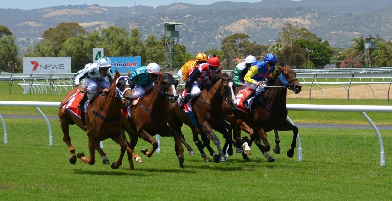 Irish racing betting online sports betting welcome bonus no deposit